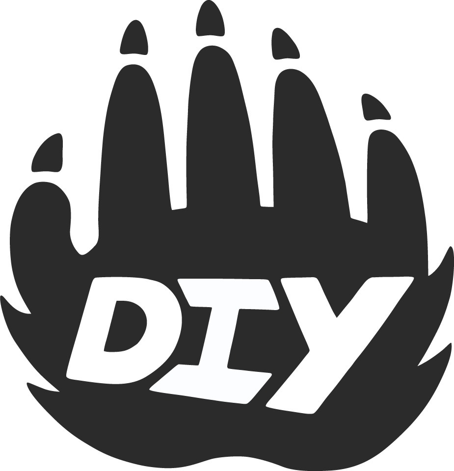 Important Points To Note About DIY Logo